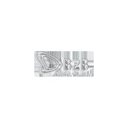 B2B Digital Clusters