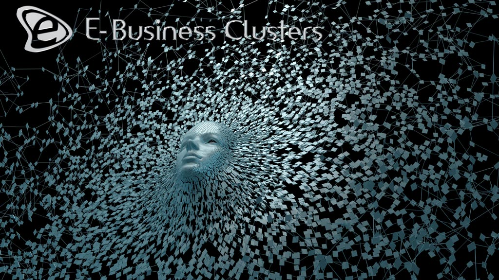 About the Company - E-Business Clusters